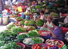 vietnam gourmand delights