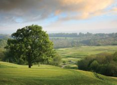 uk golf dale hill