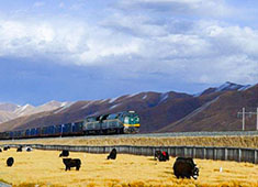 tibet china qingzang railway holiday