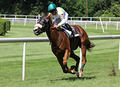 horse racing sports events