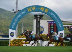 horse racing sports tours