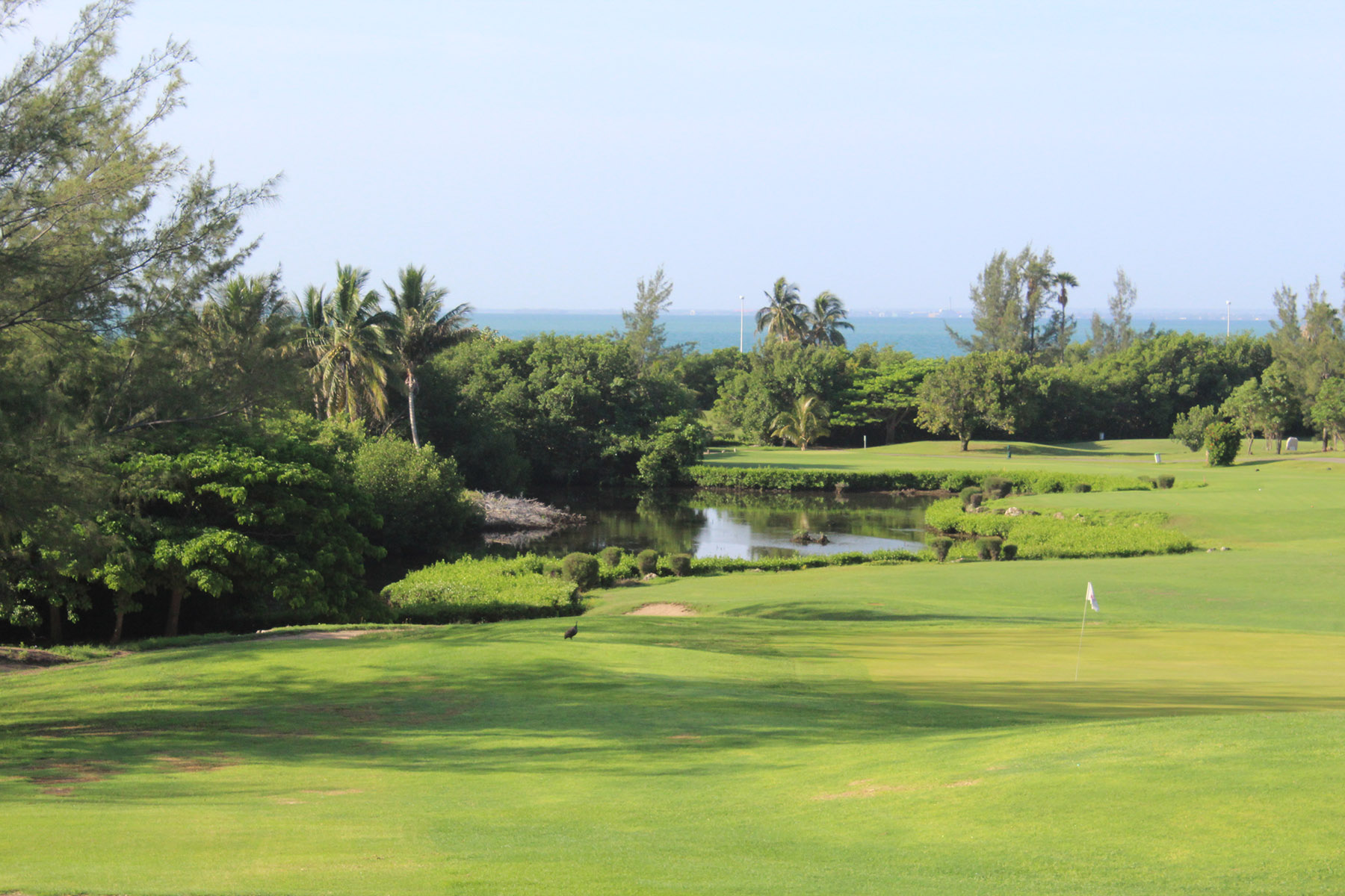 tropical golf holiday packages
