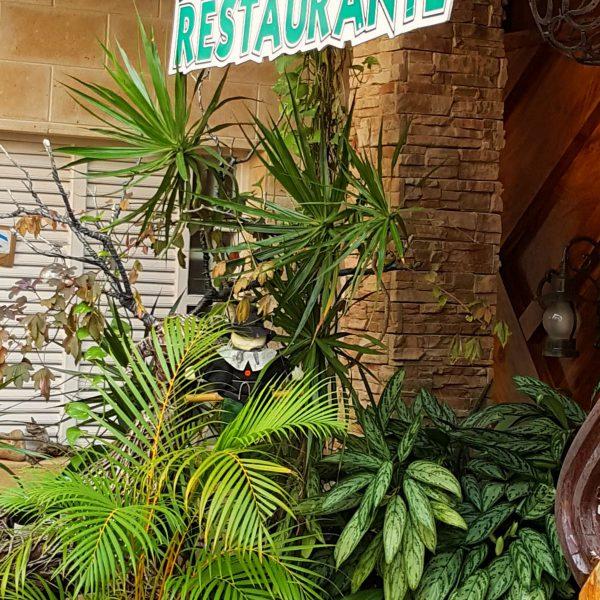 030 Cienfuegos