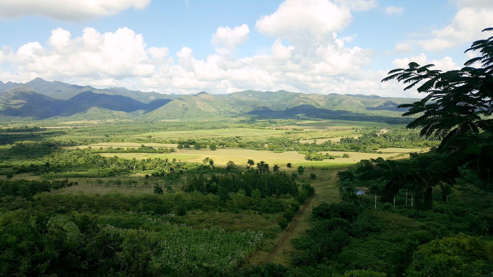 050 Trinidad