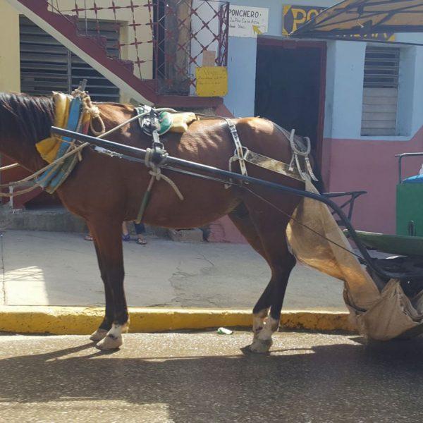 051 Trinidad