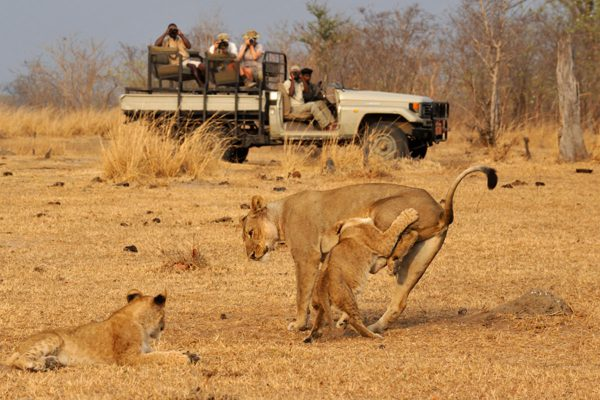 Heart of Africa 006