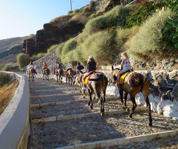3_IMAGE Santorini Tours (Donkey rides)